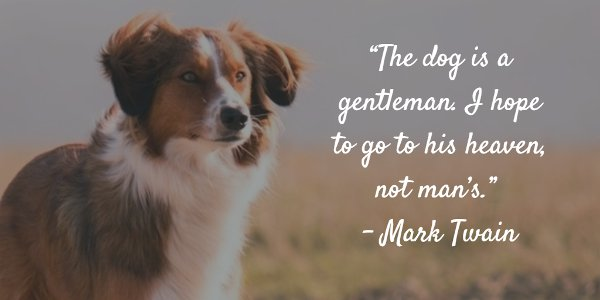 Mark Twain picture quote about dogs